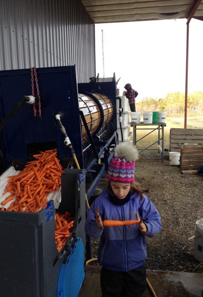 saveursmitis_lavage carottes enfants